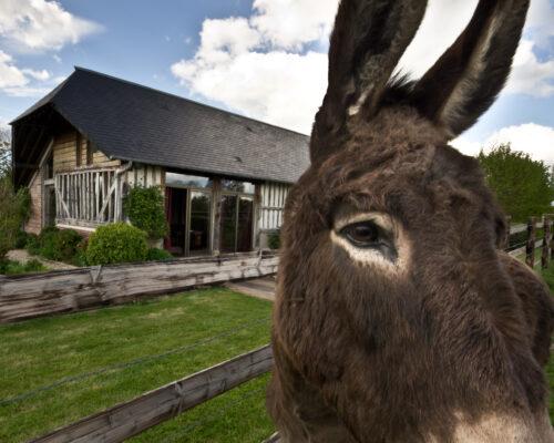 Location maison de vacances à la campagne Normandie - La Vie de Cocagne
