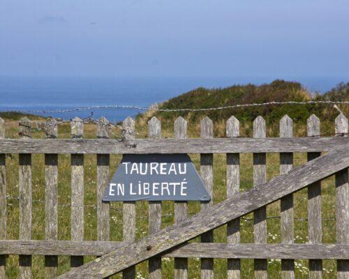 Visite du Cotentin paysages sauvages de La Hague - La Vie de Cocagne