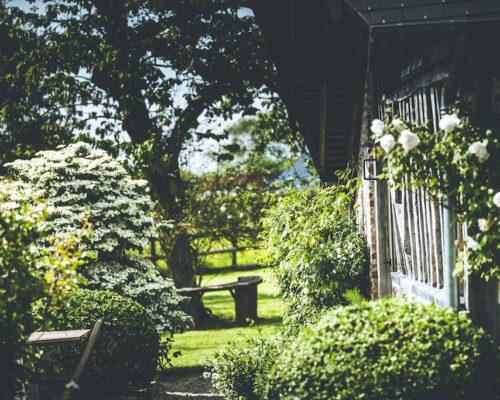 Fleurs blanches et buis, gîte de luxe la Vie de Cocagne, Normandie
