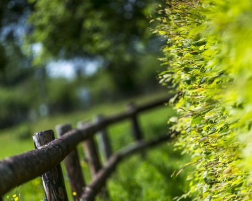 La Vie de Cocagne, Jardin, Gite de charme Normandie